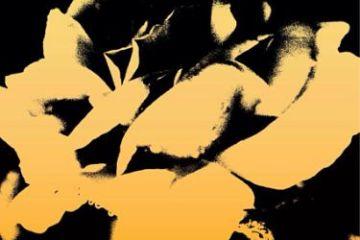 Let's Talk Daggers - A Beautiful Life Album Cover