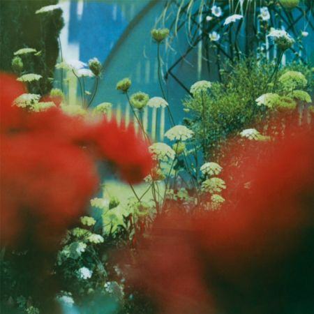 Pulled Apart By Horses The Haze album review