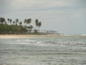 The beautiful beaches of the Dominican Republic