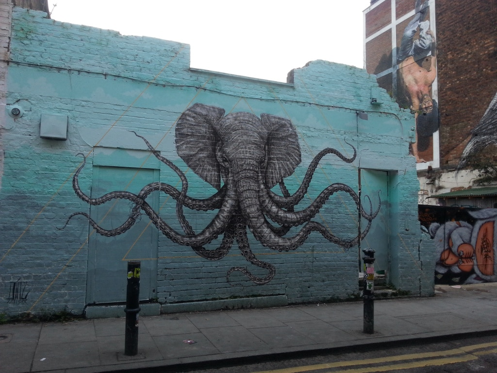 The Elephant made of lines