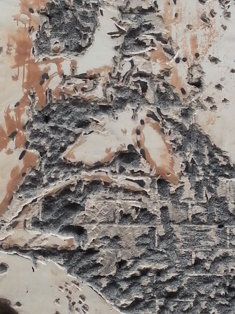Closer look at the plaster