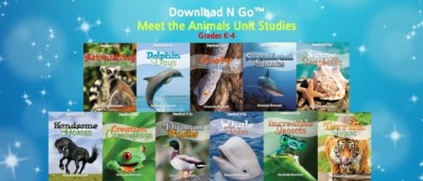 Unity Studies by Amanda
