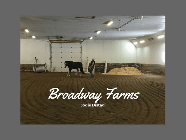 Horse training and riding lessons at Broadway Farms, LLC in Albert Lea, MN