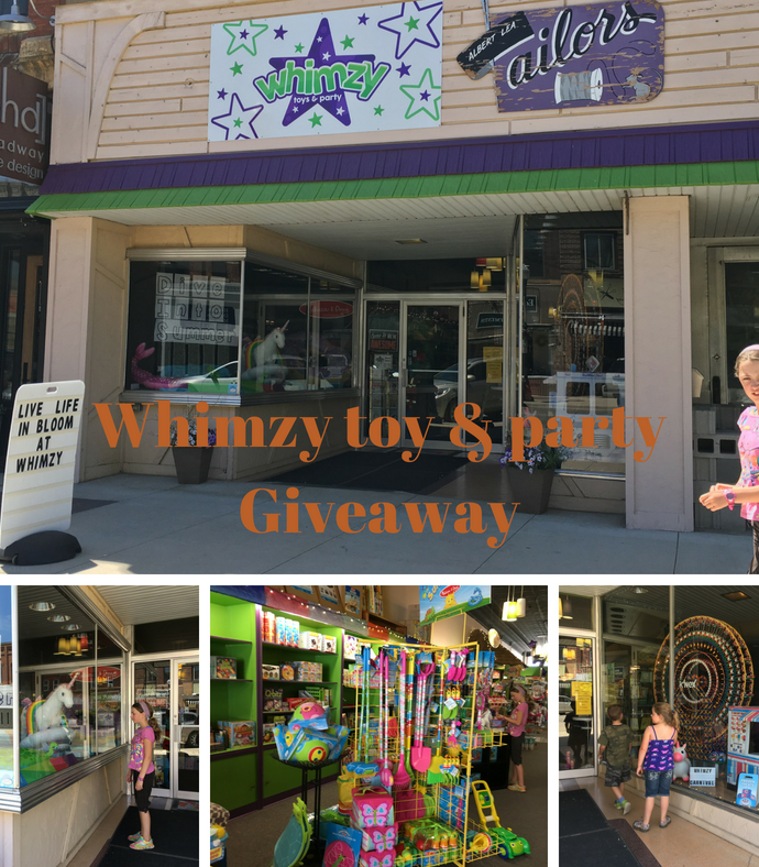 Hey Whimzy, Albert Lea's Local Toy Store