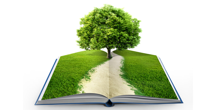 Books Vs Trees – What Do We Really Want?