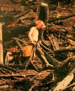 Me replanting trees on a slash burned  British Columbia landscape 1973