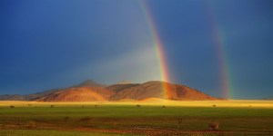 namib_grass_rainbow_big-1024x512