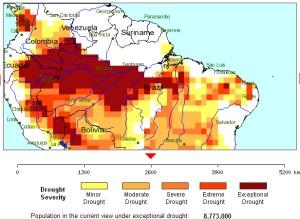 Amazon rainforest drought