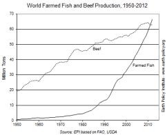 farmed fish vs beef