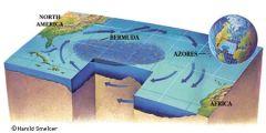 Sargasso Sea Recycles Phosphorous