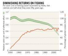 fishing-graph-2