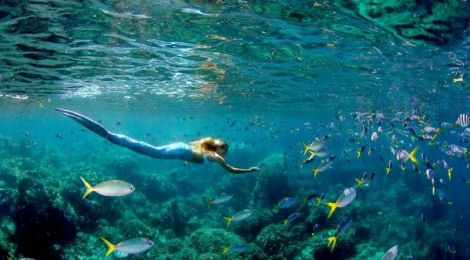 mermaids in manilla