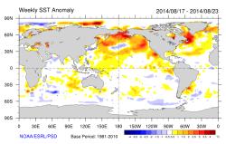 sea temperature map