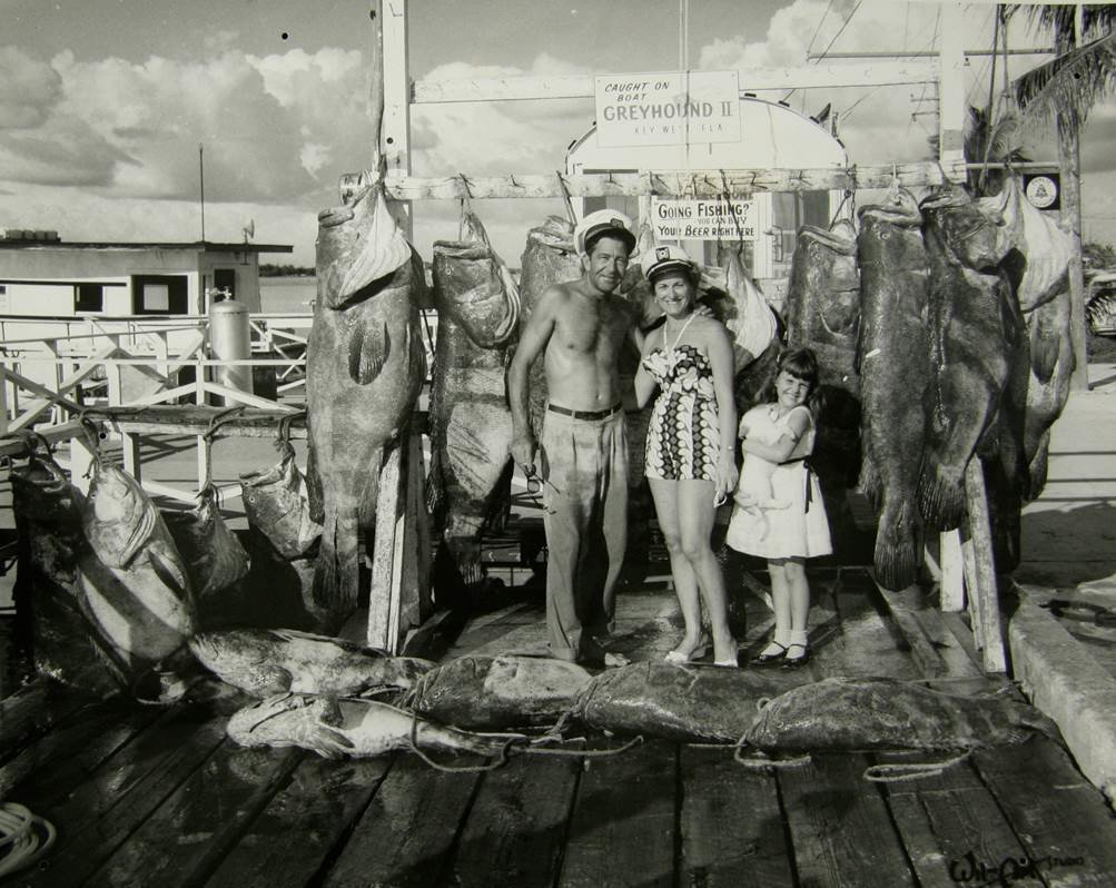 Wild Fish Shrinking In Six Pictures Worth 6000 Words Russ