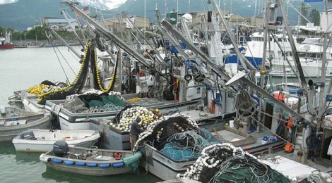 empty Pink Salmon boats