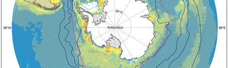 Southern Ocean Plankton Extinction Too Close For Comfort