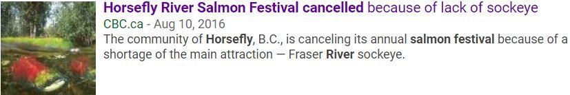 sockeye festival cancelled