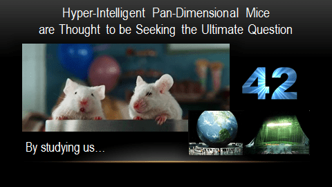 Mice_hitchhikers-guide1.png?resize=480%2