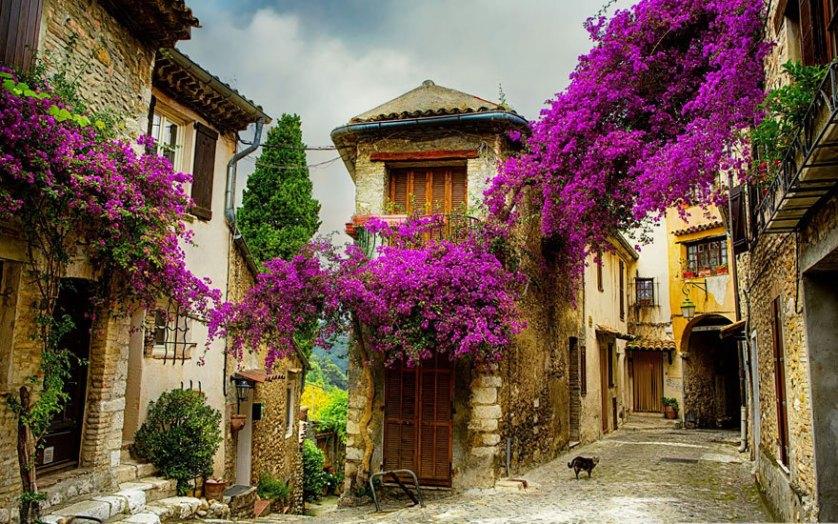 Кань-сюр-Мер, Франция