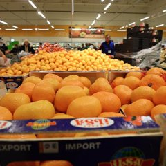 Russia unlikely to lift Turkish food embargo before Putin-Erdogan meeting