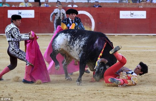 This is the moment top Spanish Matador Victor Barrio is gored by a bull in Teruel, Aragon