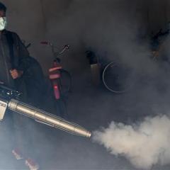 Thailand to enforce law to eliminate Zika breeding spots