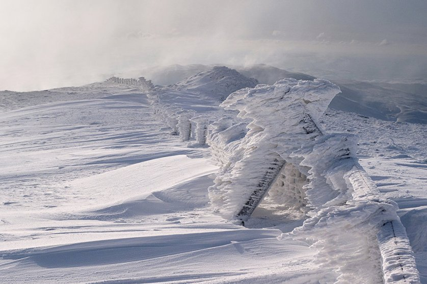 Аллан МакДугал сфотографировал заснеженную гору Плинлимон - высшую точку Кембрийских гор. Жюри оценило причудливые формы природной скульптуры, запечатленные на снимке.
