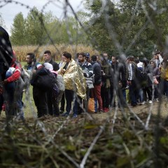 Russia's emergencies ministry ready to help Hungary organize work with refugees