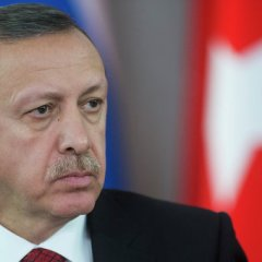 Эрдоган подал в суд на политолога из Франции