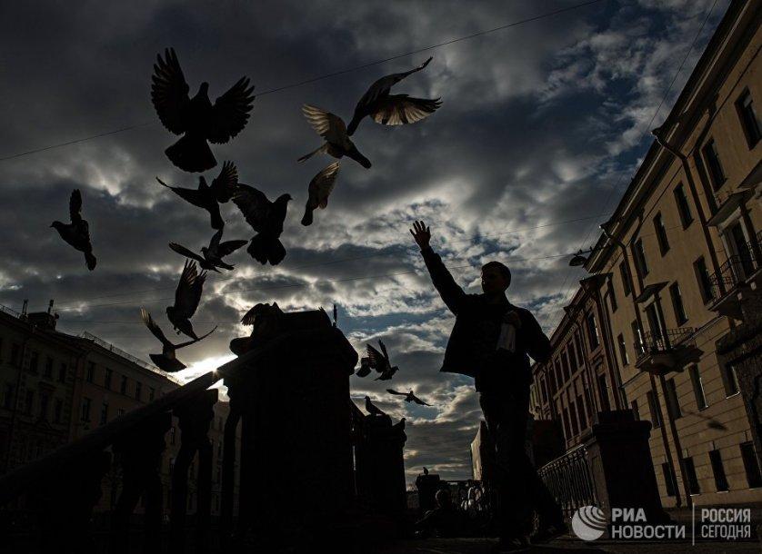 Молодой человек кормит голубей на канале Грибоедова в Санкт-Петербурге.