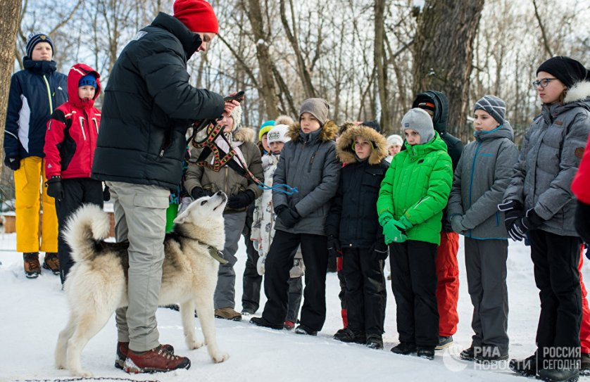 Во время прохождения квеста дети смогут покататься на упряжке ездовых собак, научиться определять направление ветра, ориентироваться в типах облаков на небе и узнать многое другое.