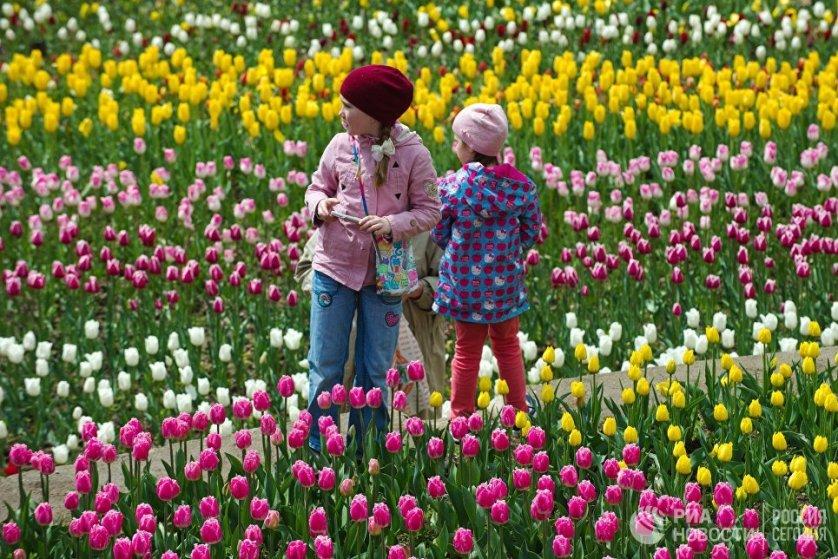 """В полдень 10 апреля в Никитском ботаническом саду Крыма состоялось открытие ежегодного """"Парада тюльпанов""""."""