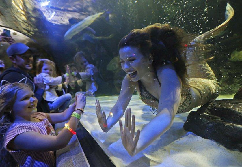 Шоу русалок в американском городе Вирджиния-Бич, расположенного на побережье Атлантического океана.