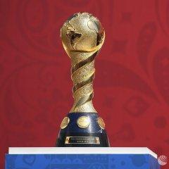 Почти 300 тыс. билетов продано на матчи Кубка конфедераций в РФ