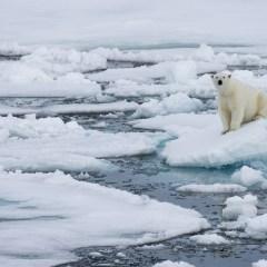 Ученые нашли связь между потеплением в Арктике и холодами в Евразии