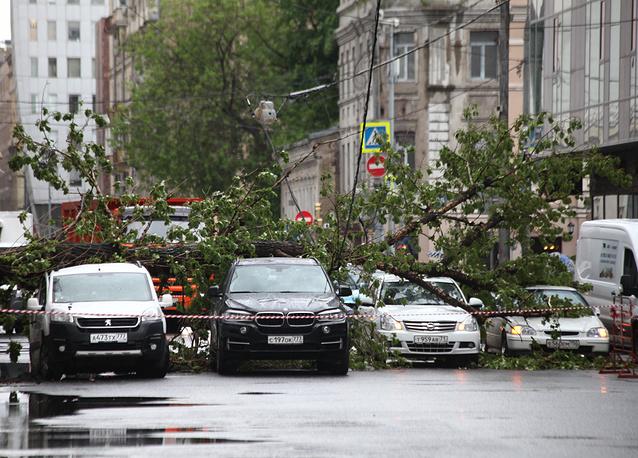 11 человек погибли в результате урагана в Москве