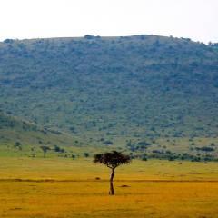 Обнаружена связь между экологией США и осадками в Африке