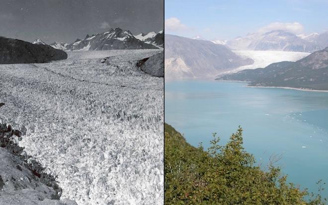 Фотографии от 1940-х до 2000-х годов показывают, как сильно изменение климата отразилось на ледниках Земли. Вот фотографии ледника Мьюир на Аляске в августе 1941 года (слева) и в августе 2004 года (справа). © NASA