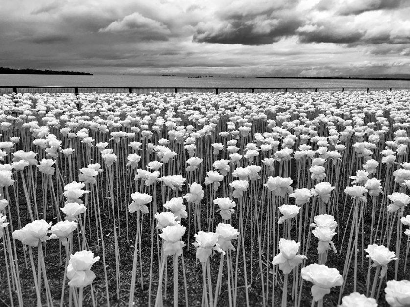 """Работа фотографа из Филиппин Сиднея По, занявшая 1-ое место в категории """"Цветы""""."""