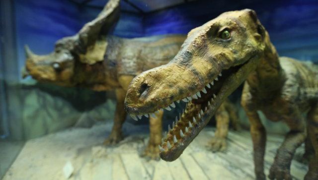 Ученые назвали причину расцвета популяции динозавров