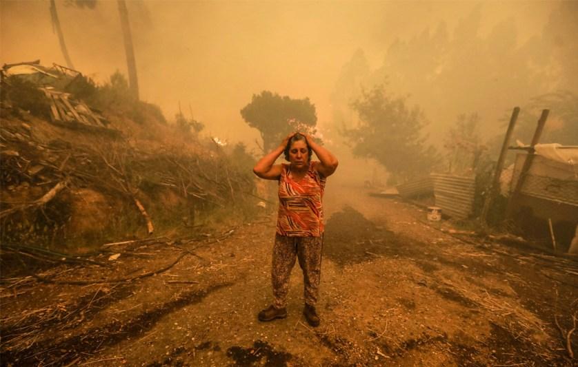 Эти природные пожары стали для Португалии самыми масштабными за последние полвека. До этого самым крупным считался пожар 1966 года, когда 25 военнослужащих пытались потушить крупные возгорания близ Синтры. В связи с трагедией в стране объявлен национальный траур.