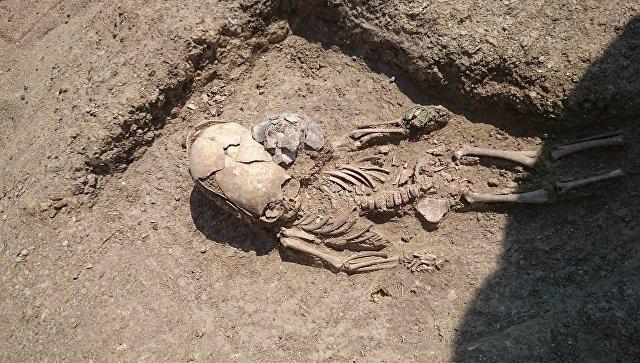 В Крыму нашли античное захоронение младенца с сильно вытянутым черепом