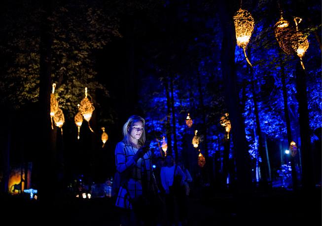 Волшебный лес в парке «Останкино»