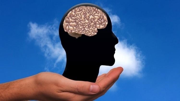 أفضل حمية غذائية للحفاظ على صحة الدماغ