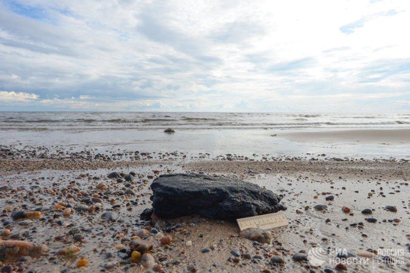 Все эти экологические проблемы связаны с произошедшим разливом нефтепродуктов. На фото: мазутно-песчаный агрегат, образовавшийся вследствие разлива топлива в Онежском заливе 1 сентября 2003 года.