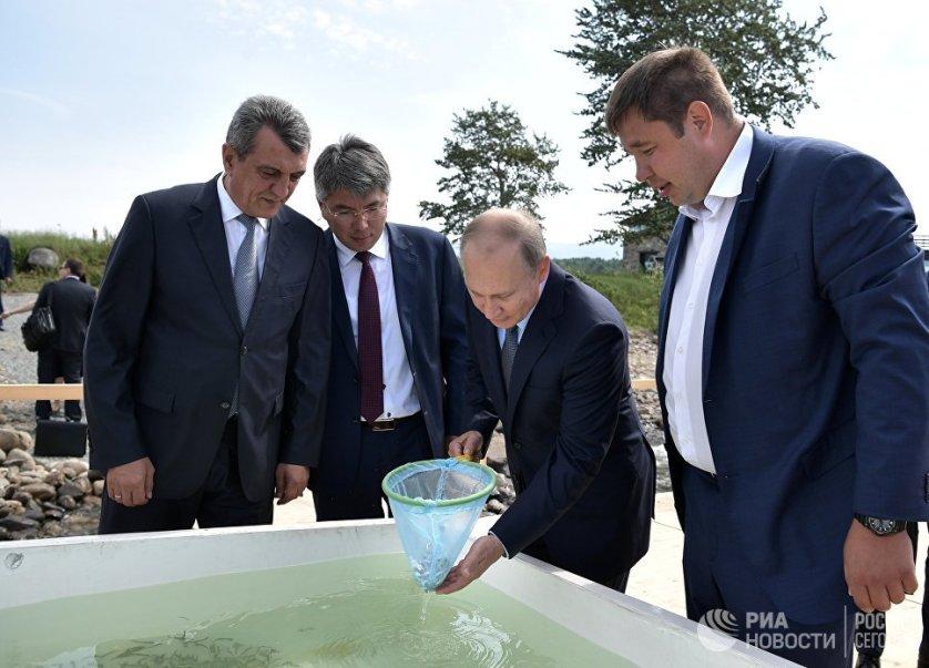 Президент России Владимир Путин во время посещения Байкальского государственного природного биосферного заповедника принял участие в церемонии выпуска в озеро молоди байкальского омуля.