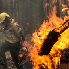 Площадь природных пожаров в Иркутской области превысила 300 тыс. га