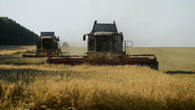 Ткачев: Россия всегда будет собирать не менее 100 млн тонн зерна в год