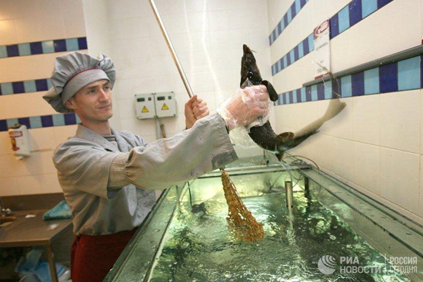 Работа одного из супермаркетов города Новосибирска