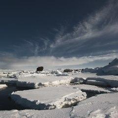 Что случится, если Южный океан потеплеет на 1 градус?